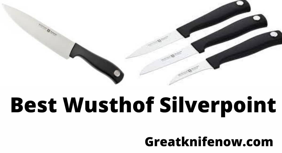 Wusthof Silverpoint Review