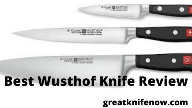 Best Wusthof Knife Review